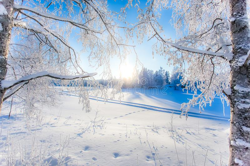Very cold winter day scenery from Sotkamo, Finland. stock image