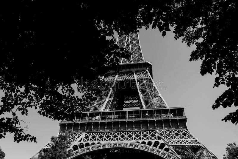 Very cool picture of an Eiffel tower in black and white tower. Leaves are around stock photo