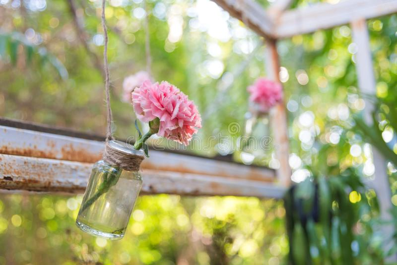 Hanging flower vase. Very cute pink flower in diy hanging glass bottle for vase in garden stock images