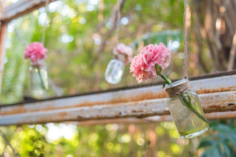 Hanging flower vase. Very cute pink flower in diy hanging glass bottle for vase in garden royalty free stock images