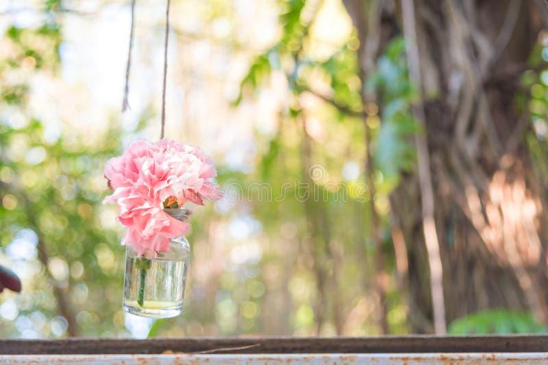 Hanging flower vase. Very cute pink flower in diy hanging glass bottle for vase in garden stock photography