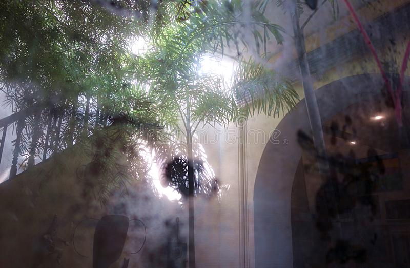 Antique Reflections of a Dream. A very dreamy image that is a reflection of a tropical courtyard in Sri Lanka with a palm tree an arched doorway and a staircase stock photography