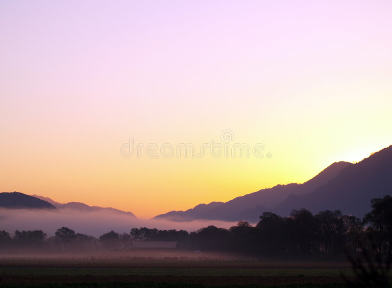 Download Very early Morning Light stock image. Image of mist, grass - 1580829