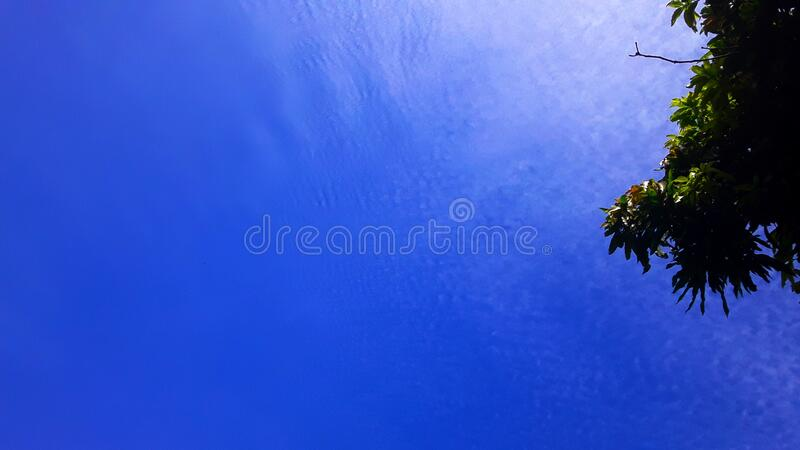 Very few clouds. Amazonian clear skies with very few clouds, the photo shows a gradient between the blue sky and a huge and extremely white cloud contracting royalty free stock images