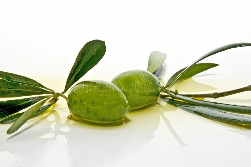 Very fresh olives royalty free stock photography