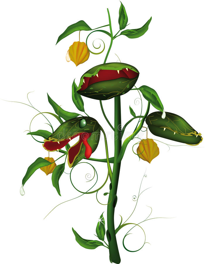 Very hungry predatory flower royalty free illustration