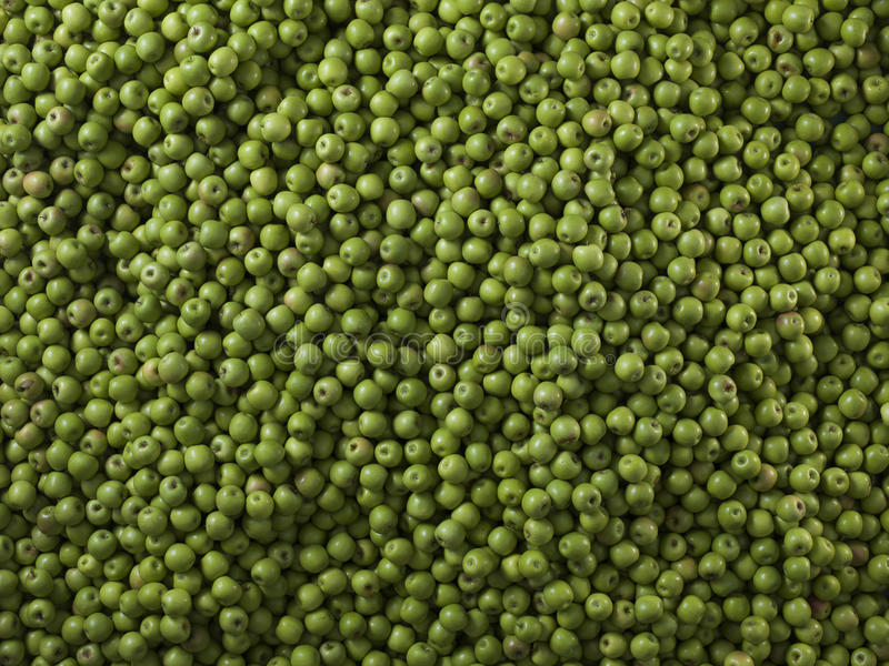 Very large group of green apples. Granny smith stock image