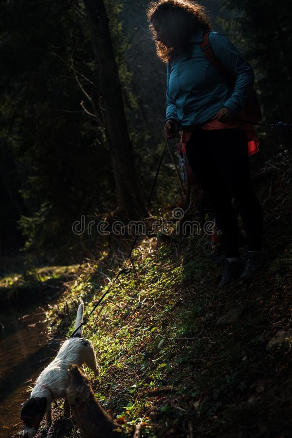 A very moody dark photo of a woman standing with her dog by the river in the forest royalty free stock photos
