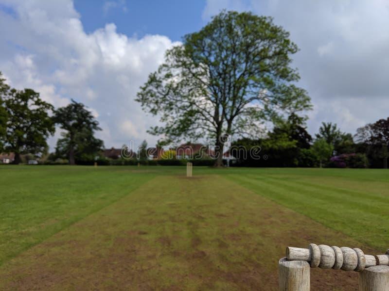 A very muddy school cricket strip stumps to stumps stock photos