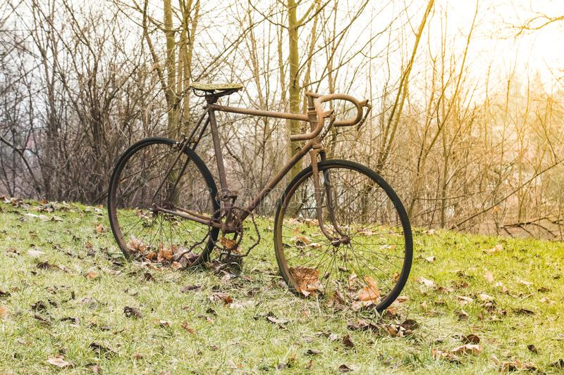 Very old iron rusty bike stands on the green grass and autumn ye royalty free stock images