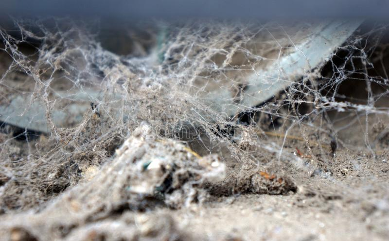 Old spider webs. Very old spider webs filled whit dust and dirt, dry knitted white lines in a corner of an abandon place, creepy ugly spider nest abandon long royalty free stock photo
