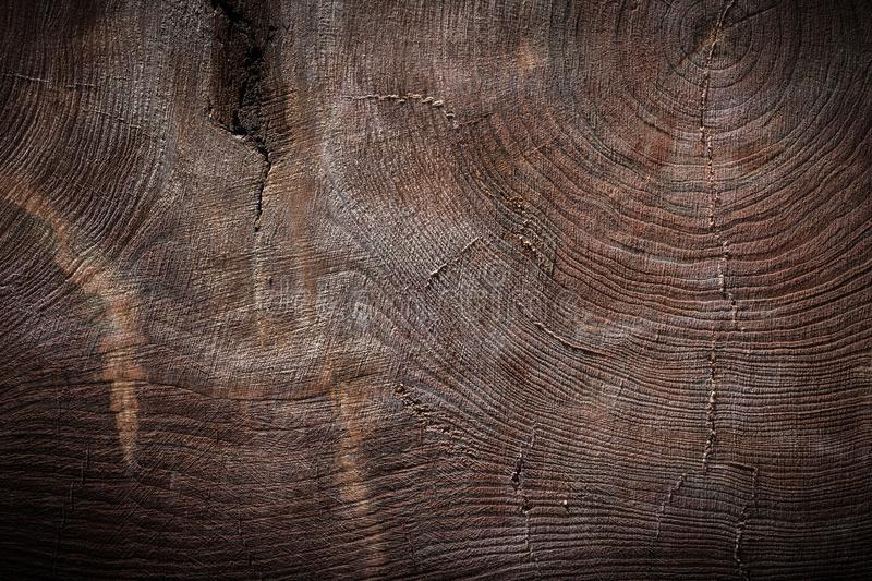 Very old vintage wood texture of cross section of tree trunk stock image
