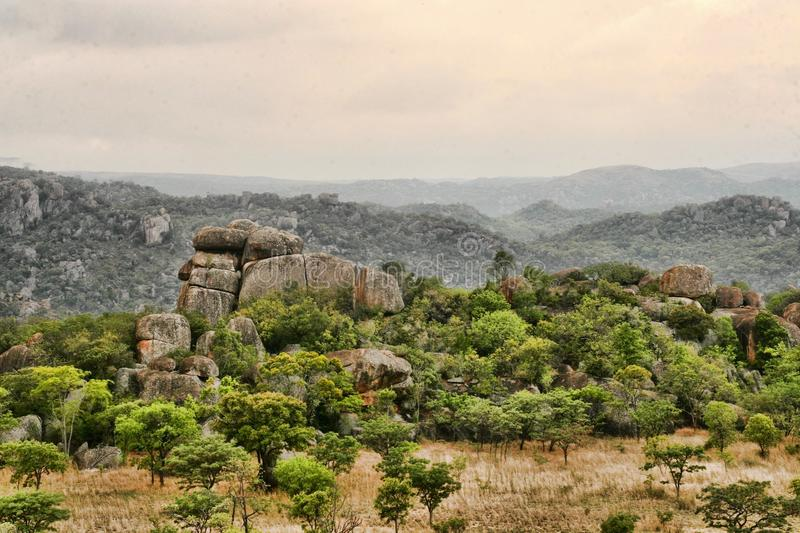 Very special vegetation on the rocks of the Matopos National Park, Zimbabwe royalty free stock photo