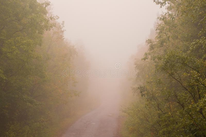 Very thick fog. The road disappearing into the fog. The concept of danger on the road.  stock photography