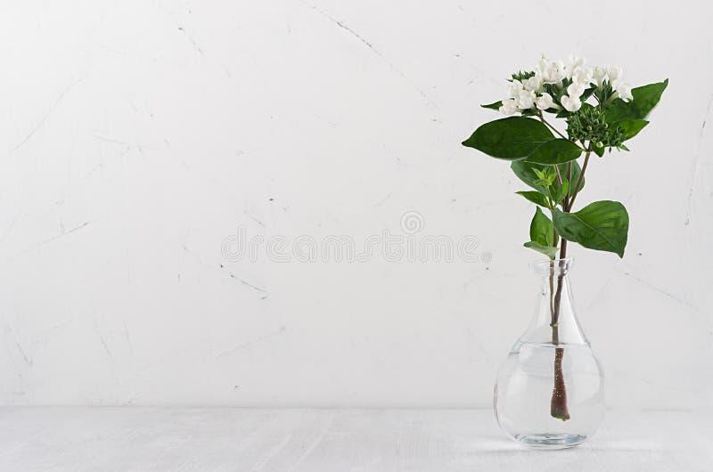 Verzacht minimalistisch boeket in uitstekende transparante vaas met witte kleine bloemen en groene bladeren op witte plank stock fotografie