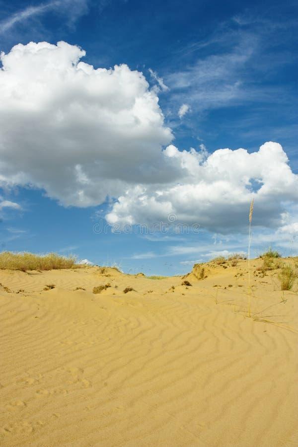 Verzend woestijn whith bewolkte hemel royalty-vrije stock afbeelding