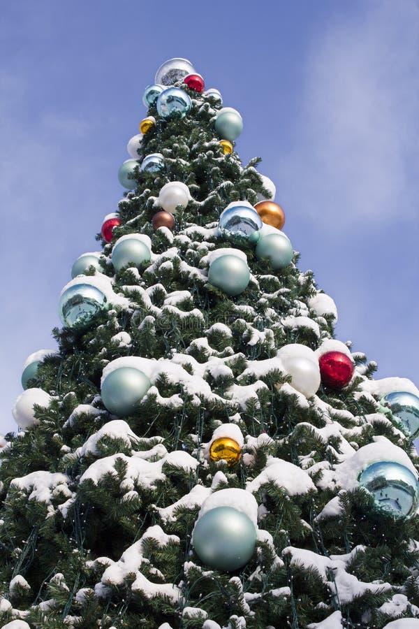 verzierter weihnachtsbaum mit schnee stockbild bild von. Black Bedroom Furniture Sets. Home Design Ideas