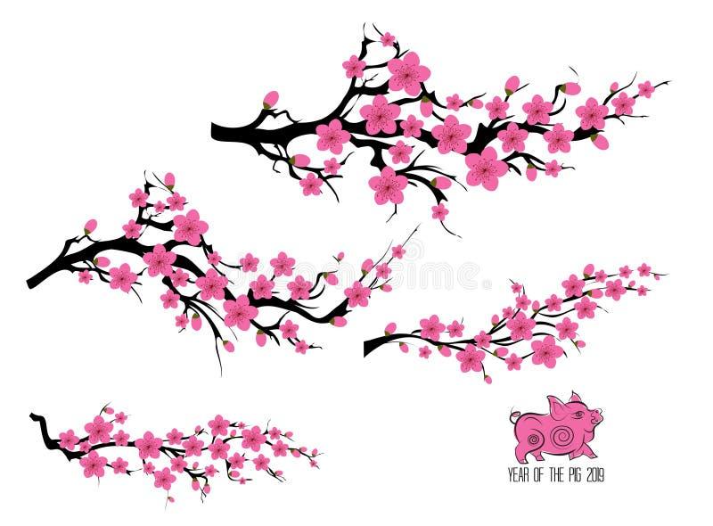 Verzweigungsbaum der Japan-Kirschblüte Japanische Einladungskarte mit asiatischer blühender Pflaumenniederlassung Jahr des Schwei lizenzfreie abbildung