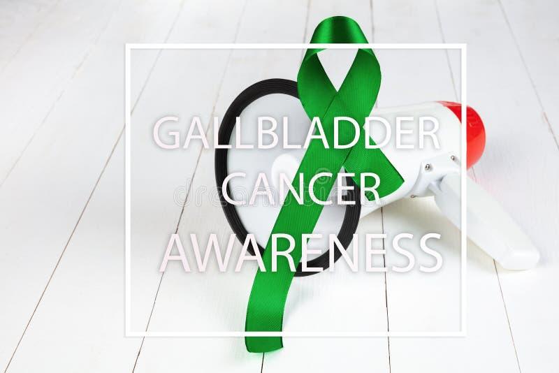Vesícula biliar y mes hepático de la conciencia del cáncer en febrero foto de archivo libre de regalías