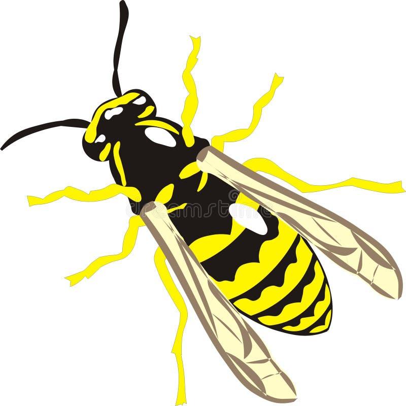 Vespa com listras amarelas ilustração royalty free