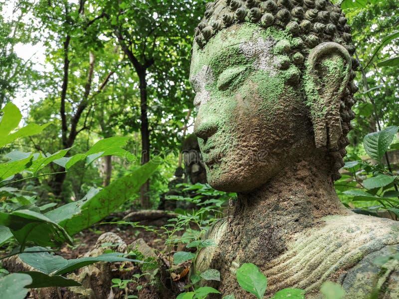 Vestígio da Buda na natureza verde em Wat Umong, Chiang Mai, Tailândia, retrato verde de buddha coberto com o musgo imagem de stock royalty free
