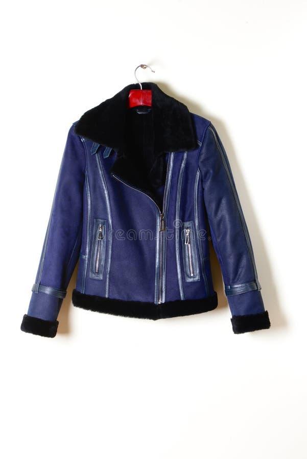 Veste bleue courte avec une peau de mouton, tirette avec un collier noir Manteau de fourrure sur un fond gris images libres de droits