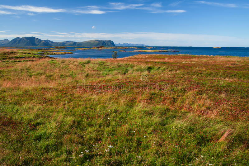 Vesteralen στη Νορβηγία στοκ φωτογραφίες με δικαίωμα ελεύθερης χρήσης