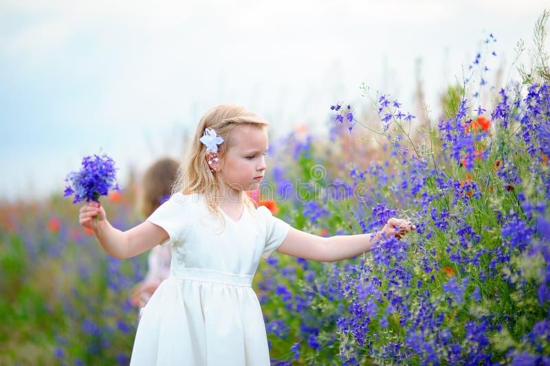 Vestido blanco que lleva de la niña que escoge las flores salvajes azules en una f foto de archivo libre de regalías