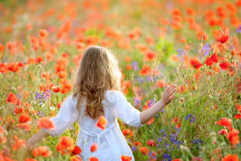 Vestido branco vestindo da menina bonito no campo de florescência do verão que anda u imagem de stock royalty free