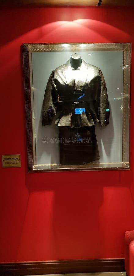 Vestido de Sheryl Crow imagem de stock royalty free