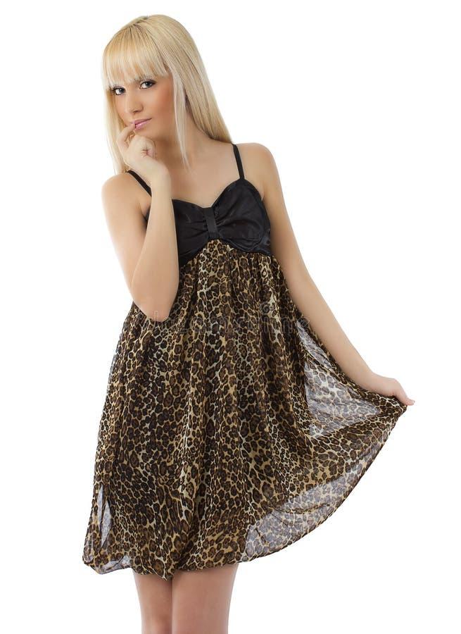 Vestido desgastando do leopardo da menina bonita fotos de stock royalty free