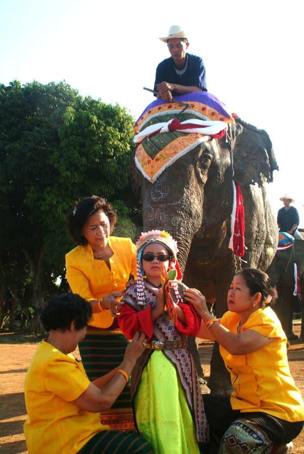 Vestido do principiante na classificação Proce da parte traseira do elefante de Satchanalai do si imagem de stock royalty free