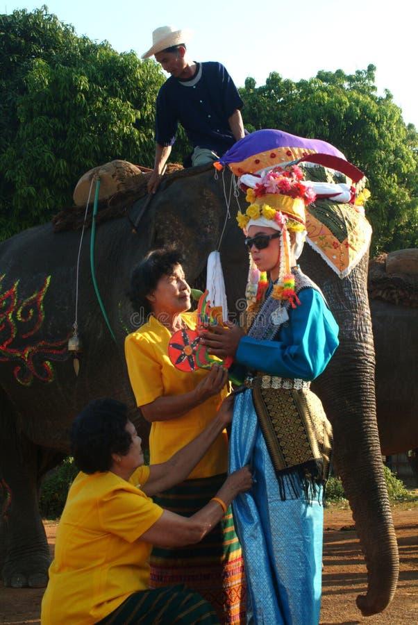 Vestido do principiante na classificação Proce da parte traseira do elefante de Satchanalai do si fotos de stock royalty free