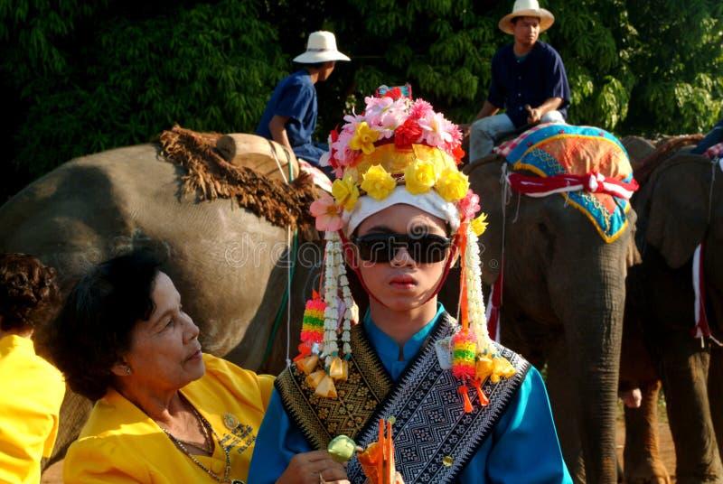 Vestido do principiante na classificação Proce da parte traseira do elefante de Satchanalai do si imagens de stock