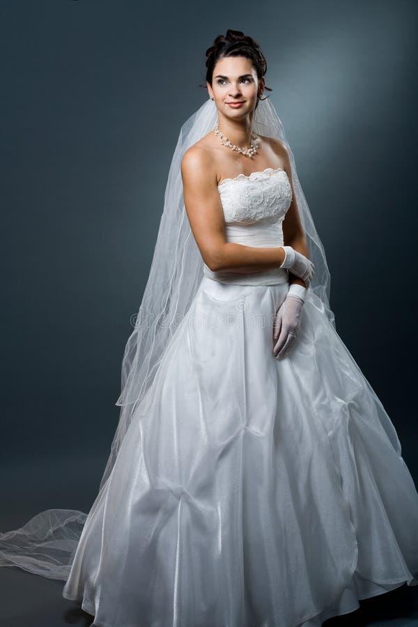 Vestido e véu de casamento foto de stock