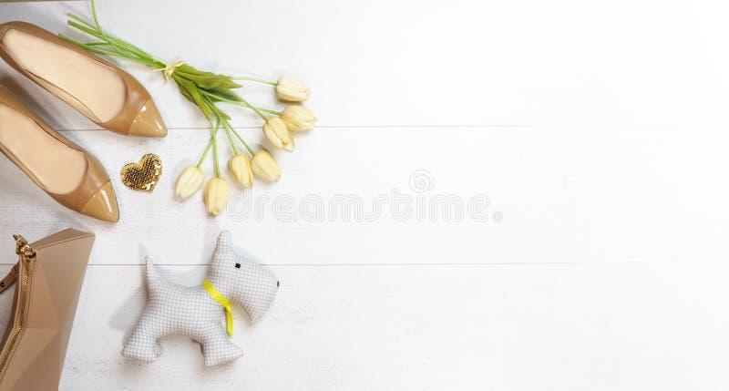 Vestido fêmea colocado plano da coleção do equipamento: tulipas do coração do ouro dos acessórios da bolsa das sapatas e cão de b imagem de stock