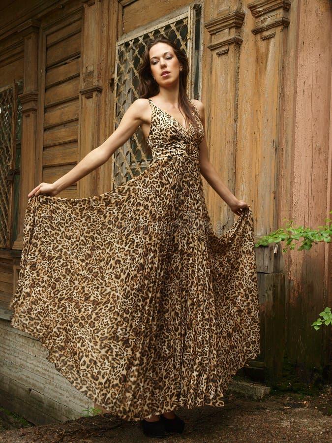 Vestido leve do leopardo foto de stock