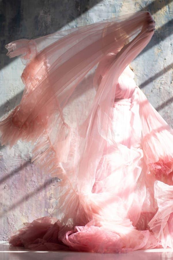 Vestido rosado del cisne, momento congelado foto de archivo