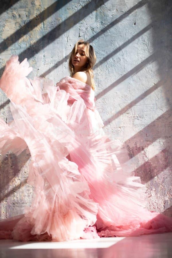 Vestido rosado del cisne, momento congelado foto de archivo libre de regalías