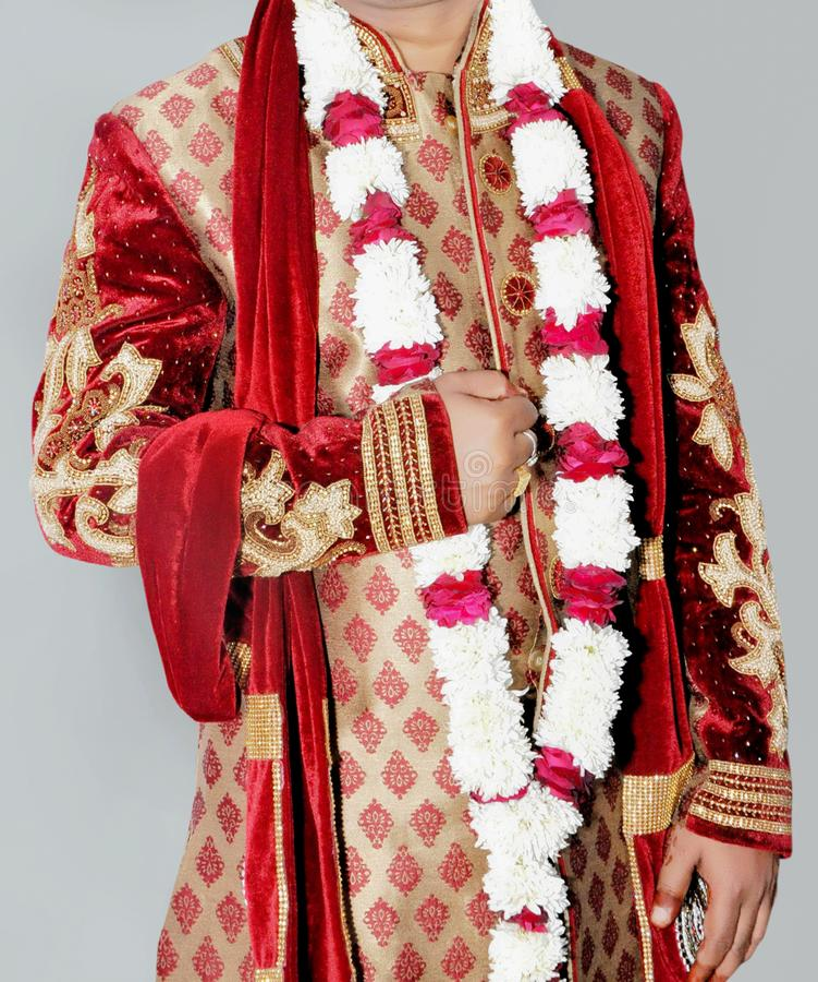 Vestido vestindo do sharwani do noivo indiano foto de stock royalty free