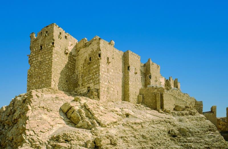 Vesting in de oude stad van Palmyra stock foto's