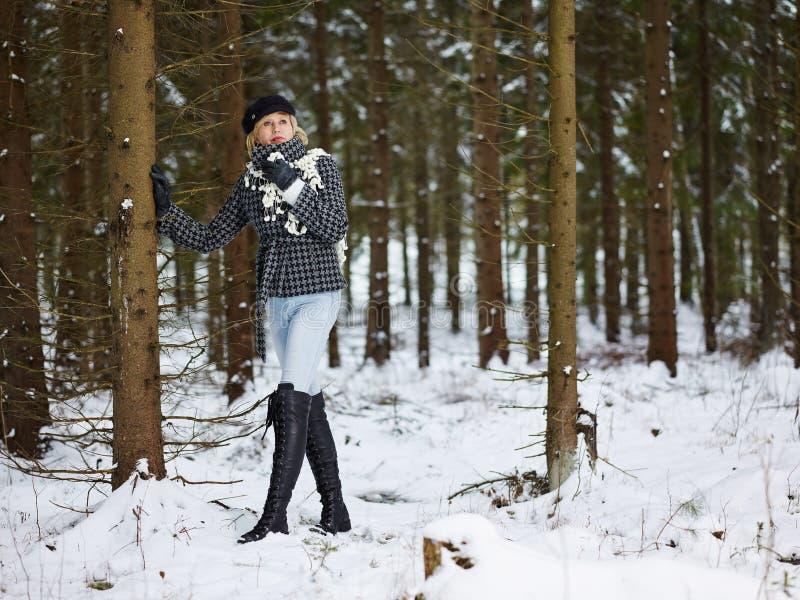Vestiti di inverno e della donna alla moda - scena rurale fotografia stock libera da diritti