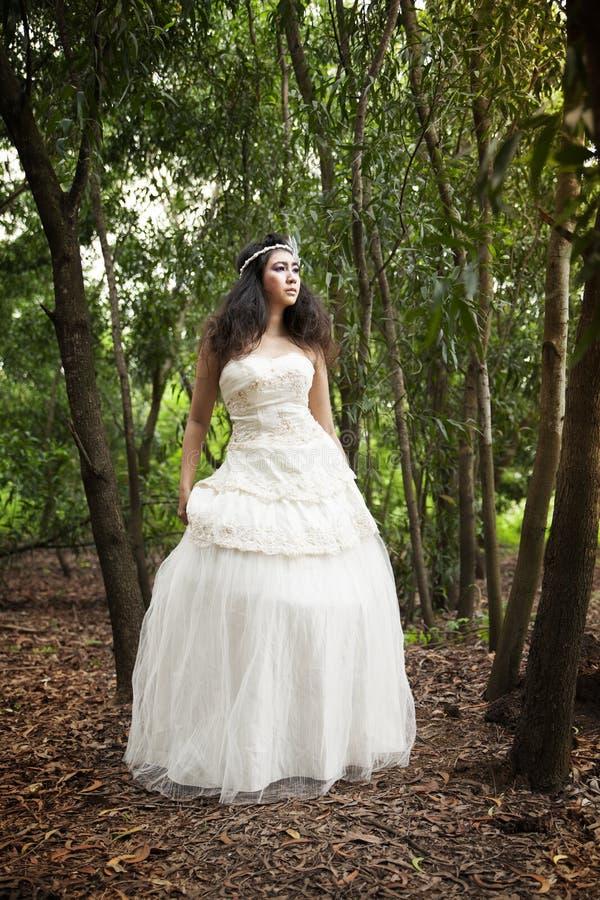 Vestito da cerimonia nuziale immagine stock
