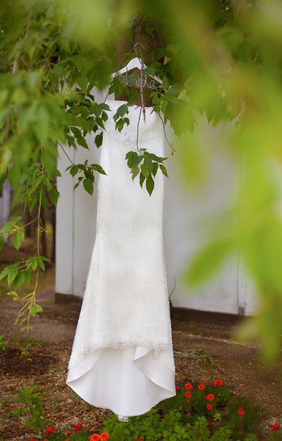 Vestito da sposa bianco dal pizzo che appende sul ramo dell'albero verde immagini stock