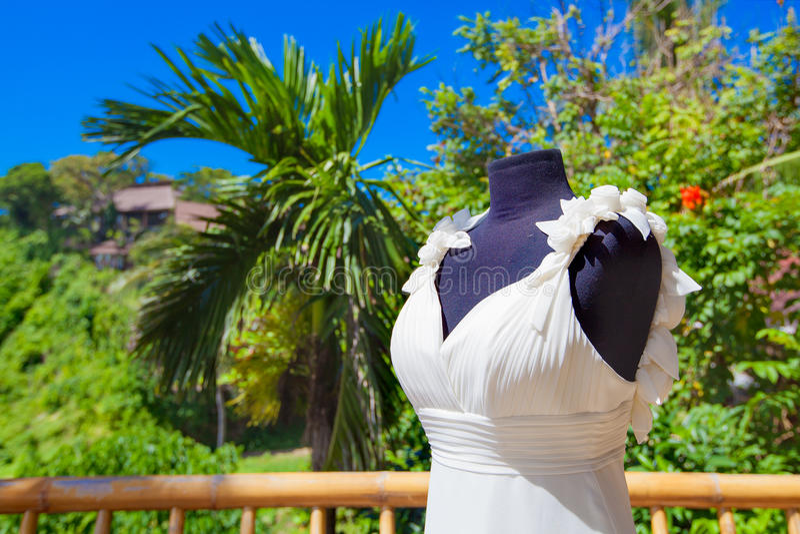Vestito da sposa contro il contesto della palma tropicale Weddin immagine stock libera da diritti