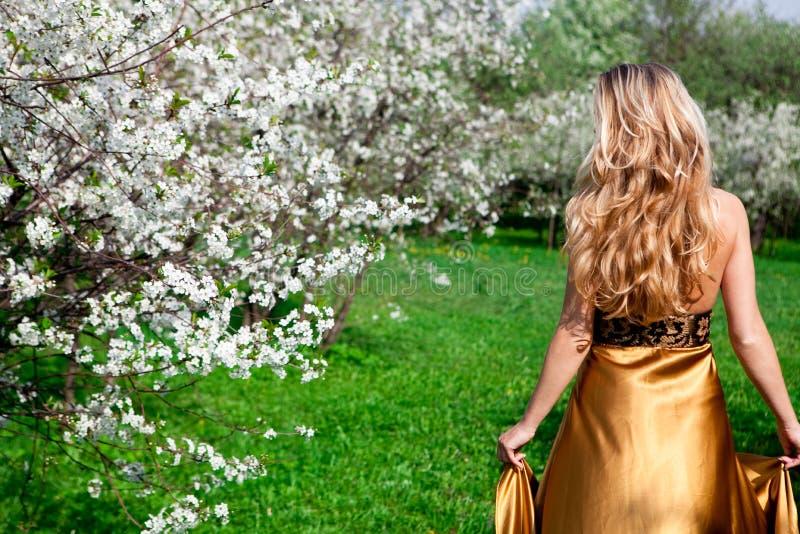 In vestito dall'oro fotografia stock libera da diritti