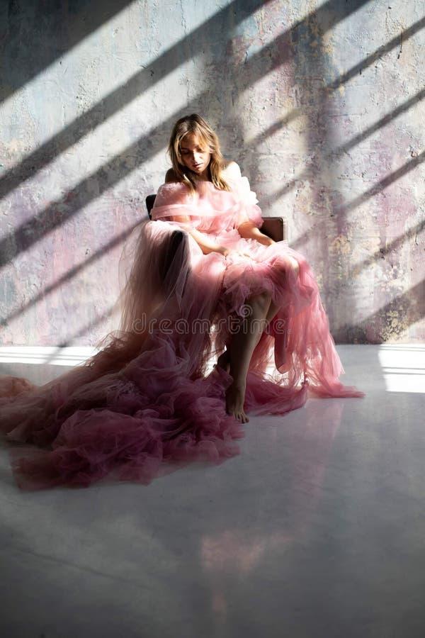 Vestito rosa dal cigno, congelato momento immagini stock