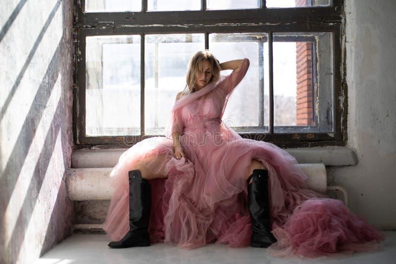Vestito rosa dal cigno, congelato momento immagine stock libera da diritti