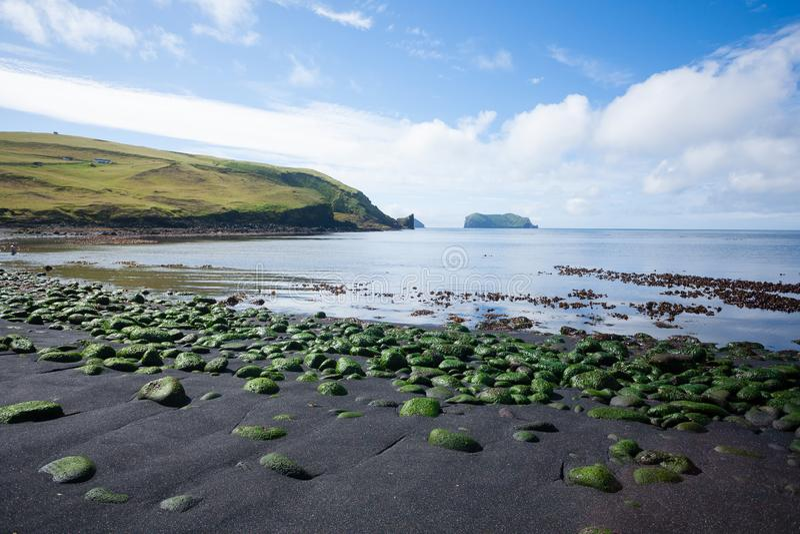 Vestmannaeyjar island beach day view, Iceland landscape. Alsey island stock images
