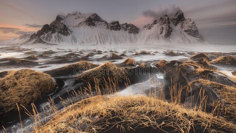 Vestrahorn berg på den Stokksnes stranden royaltyfri bild